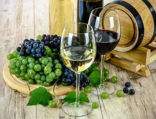 Korcula: O Paraíso dos Vinhos para Brasileiros na Croácia