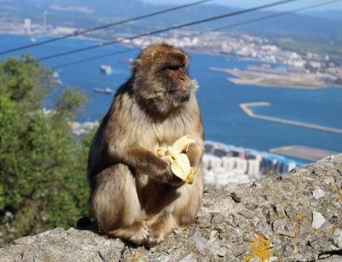 Eu preciso de uma isenção de visto ETIAS aprovada para entrar na Espanha a partir de Gibraltar?